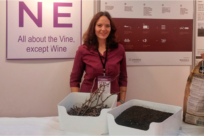 Project Presentation in the World Bulk Wine Exhibition