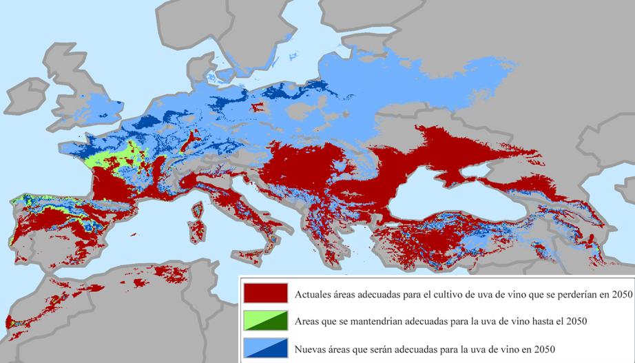 Los viñedos, amenazados por el Cambio Climático