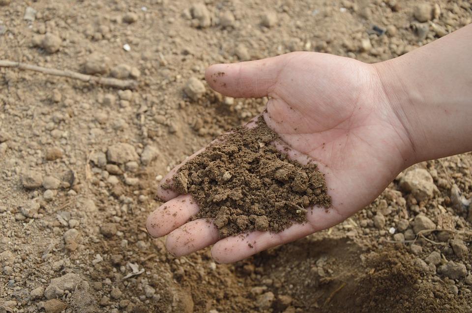 Suelos y residuos. El mercado del compost
