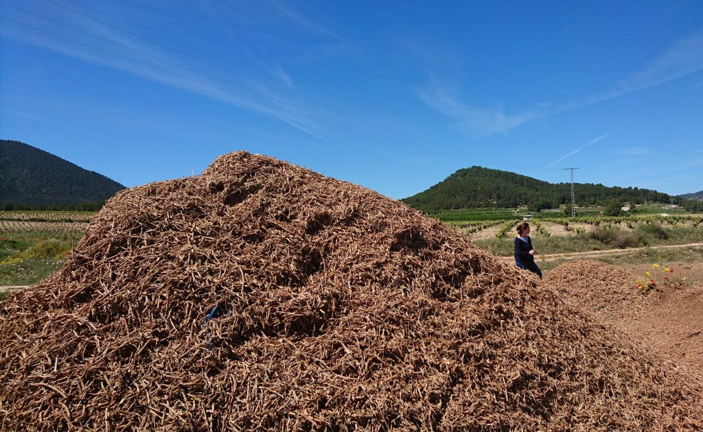 ¿Qué hace de la elaboración de enmiendas orgánicas la mejor alternativa a la quema de las poda de viñedo?
