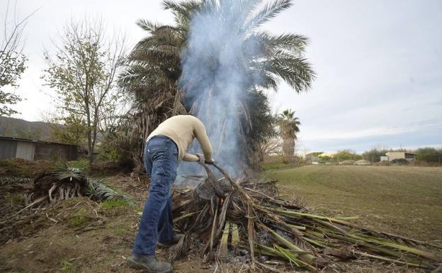 Prohibidas las quemas agrícolas cerca de viviendas durante el estado de alarma